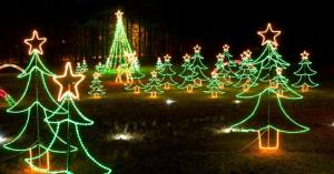 Christmas Lights at Saluda Shoals
