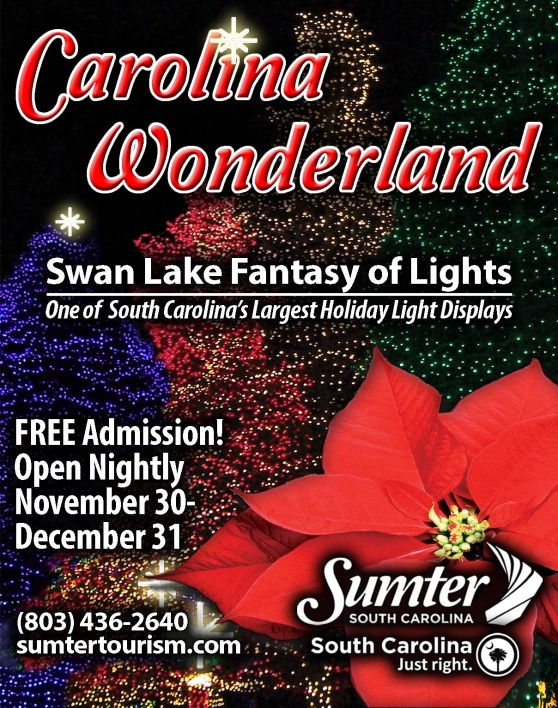 Swan Lake Fantasy of Lights