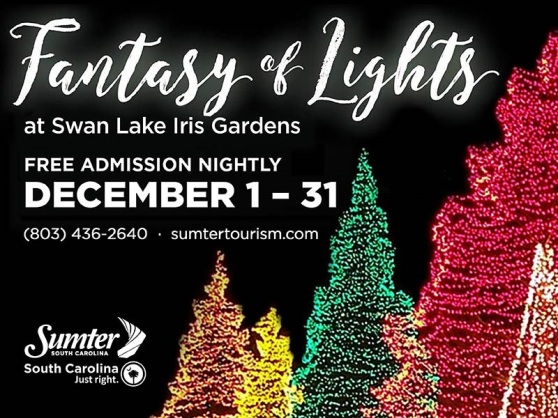 Fantasy of Lights